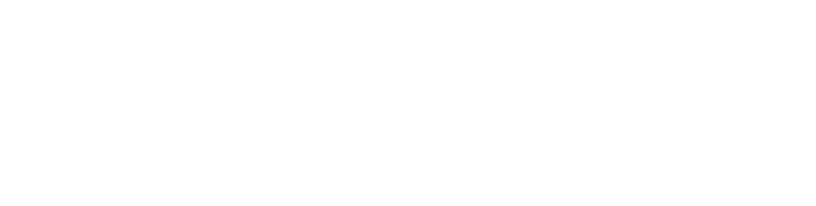 BraceID logo